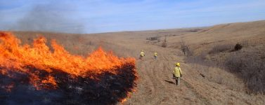 Graduate Student Anne Schechner and other participating in a controlled burn at the Konza Prairie Biological Research Station.