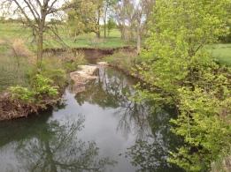 Kings Creek, Konza Prairie Biological Station. Photo credit: G. Hopper