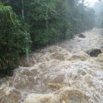 A tropical river floods during a large storm event. Photo by Dr. Alice Boyle.