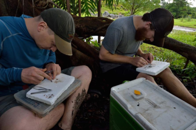 Two members of the research team – Michi Tobler (left) and Ryan Greenway (right) dissecting fish for later analysis