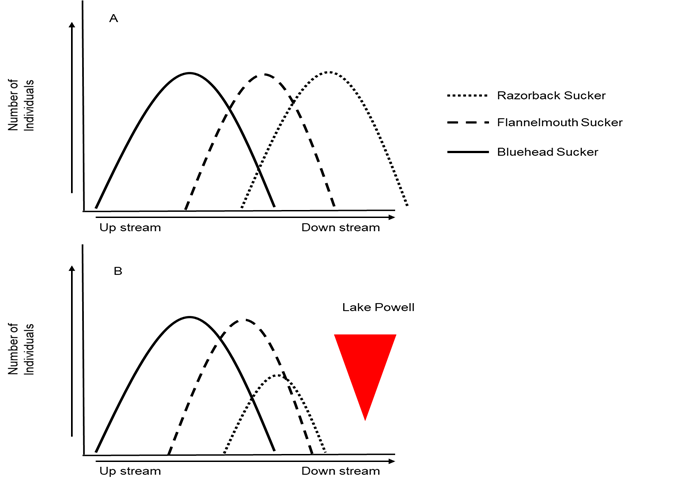 pennock-figure2